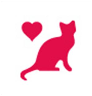 Amoureux-des-chats.jpg