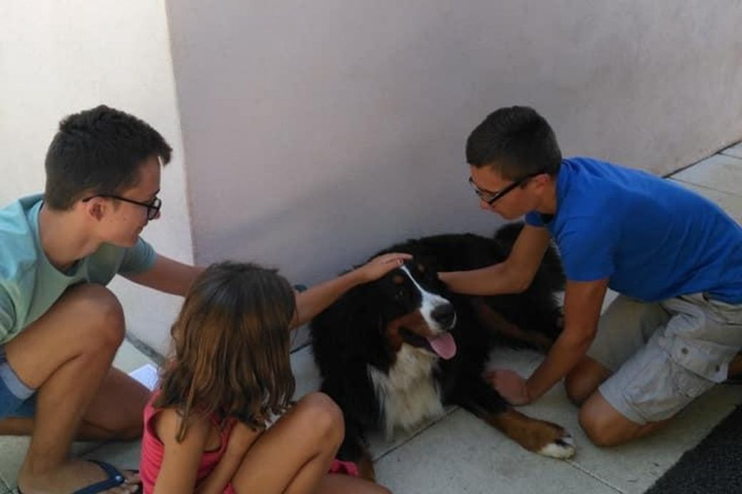 alt HomeExchange_familie_hund, title HomeExchange_familie_hund